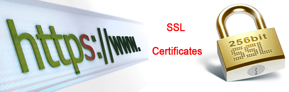 Steps To Generate a SSL Certificate | Ingenious Website Solution